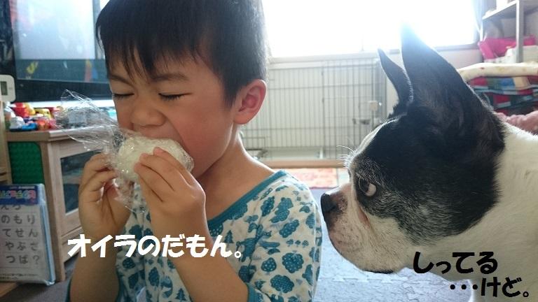 ★むつまじい★_d0187891_17170893.jpg