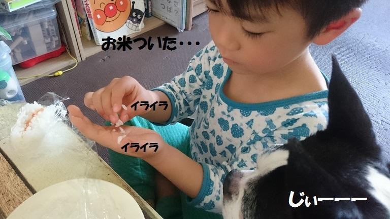 ★むつまじい★_d0187891_17172236.jpg