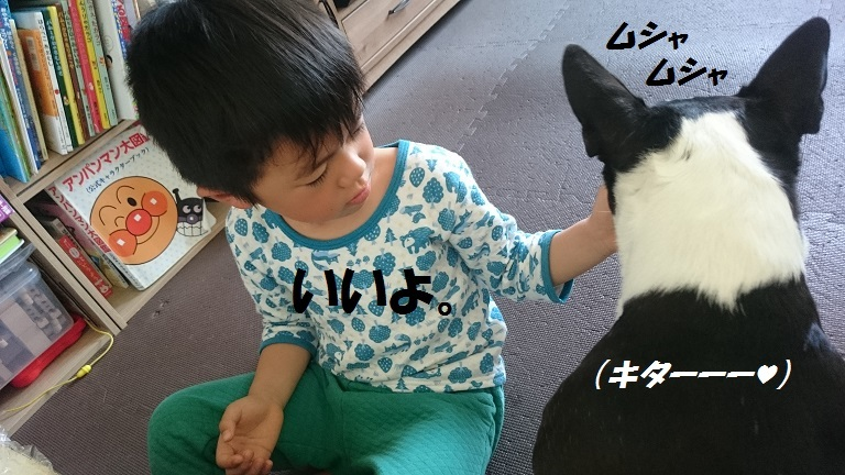 ★むつまじい★_d0187891_17173361.jpg