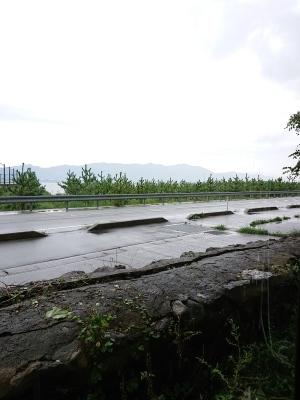 雨…_c0224694_10035794.jpg