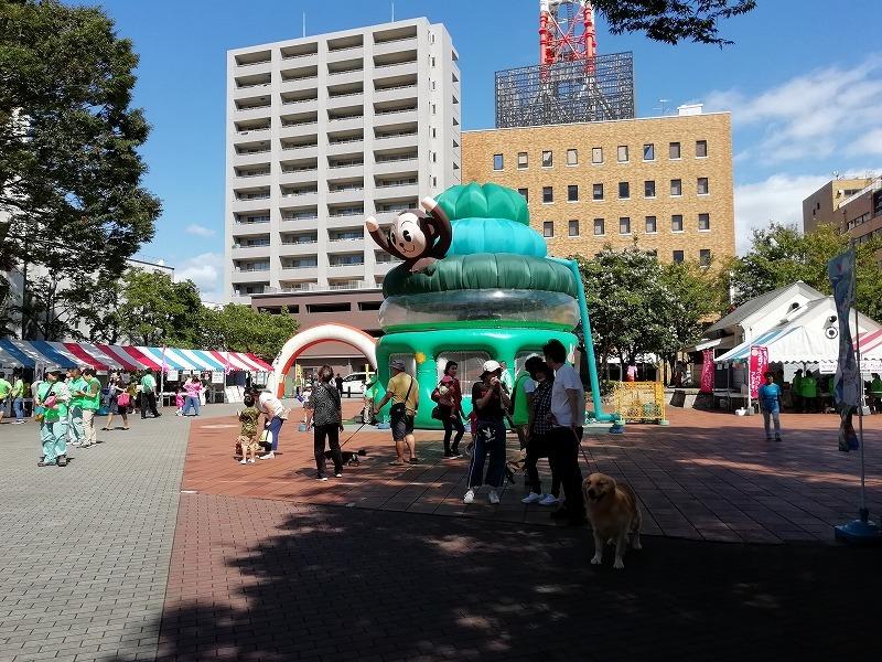 静岡県動物愛護協会から表彰を受けました!_d0050503_08155856.jpg