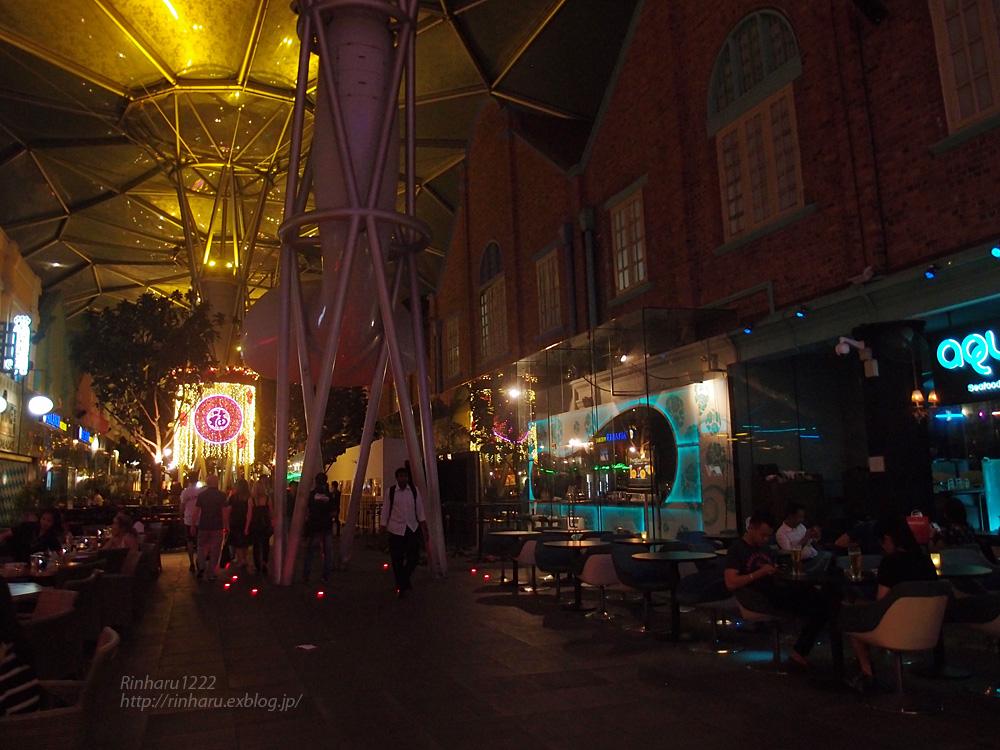 2014.2.16 シンガポールの夜_f0250322_19582597.jpg