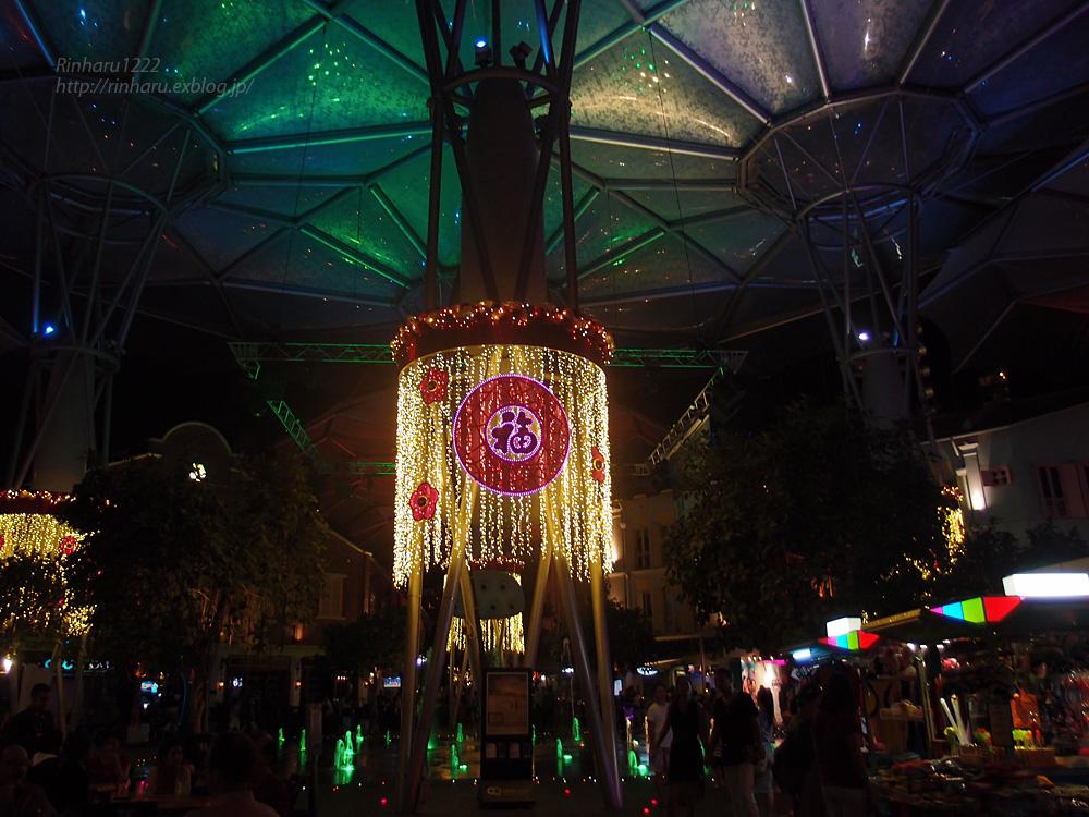 2014.2.16 シンガポールの夜_f0250322_19583068.jpg