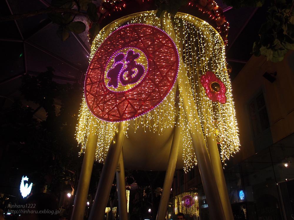 2014.2.16 シンガポールの夜_f0250322_19583540.jpg