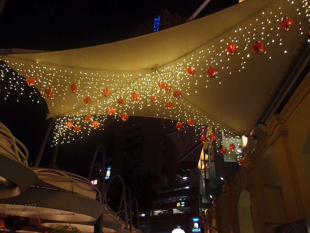 2014.2.16 シンガポールの夜_f0250322_19584527.jpg
