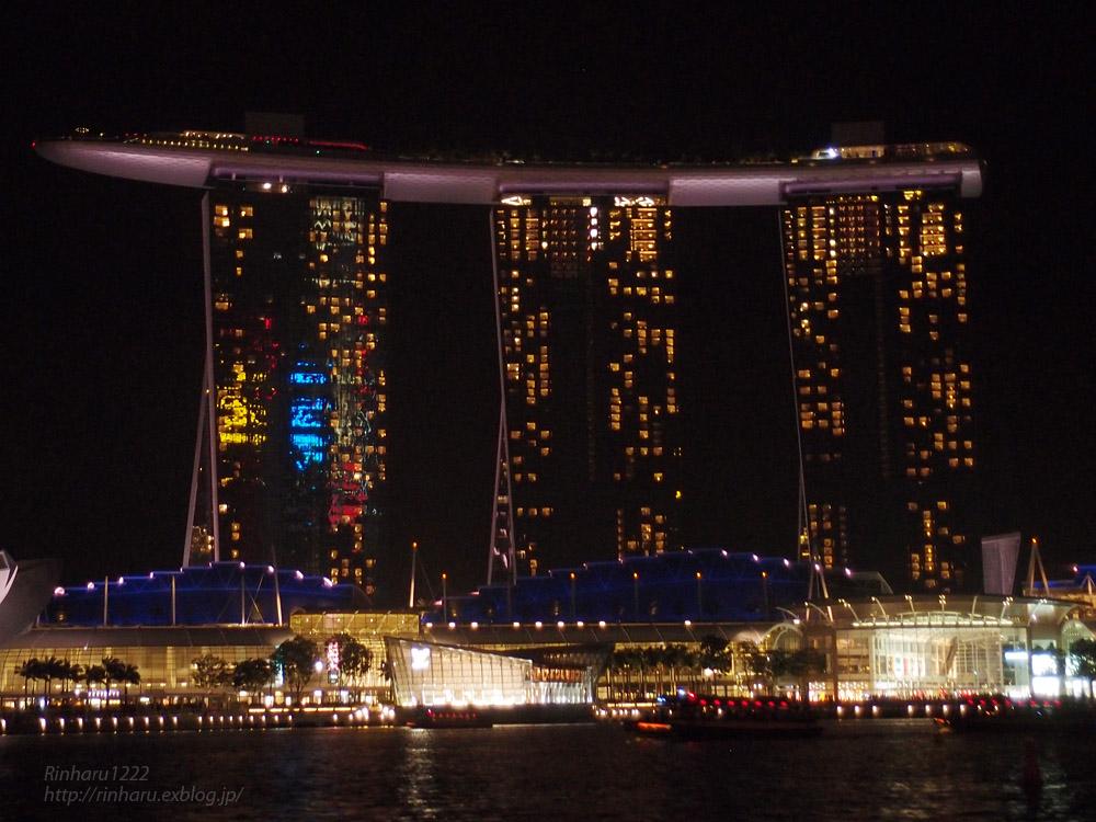 2014.2.16 シンガポールの夜_f0250322_1958458.jpg