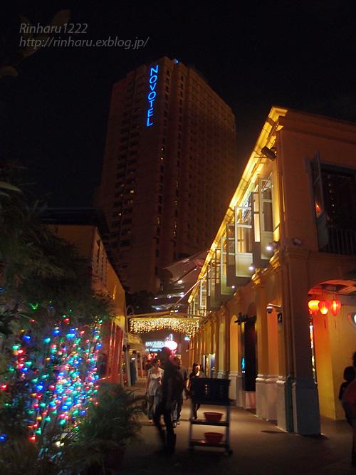 2014.2.16 シンガポールの夜_f0250322_19584931.jpg