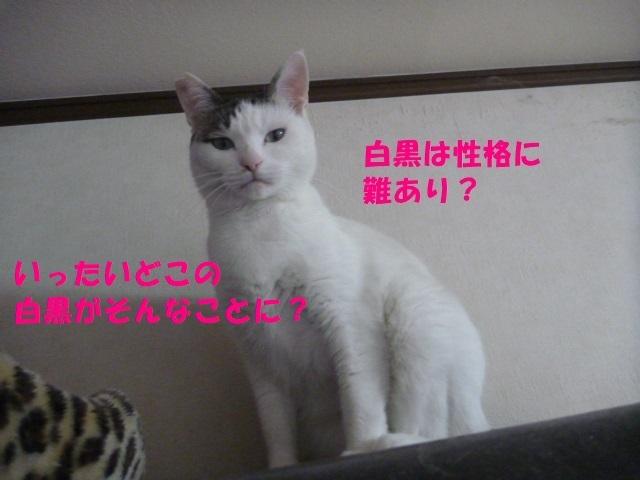 e0142430_13501413.jpg