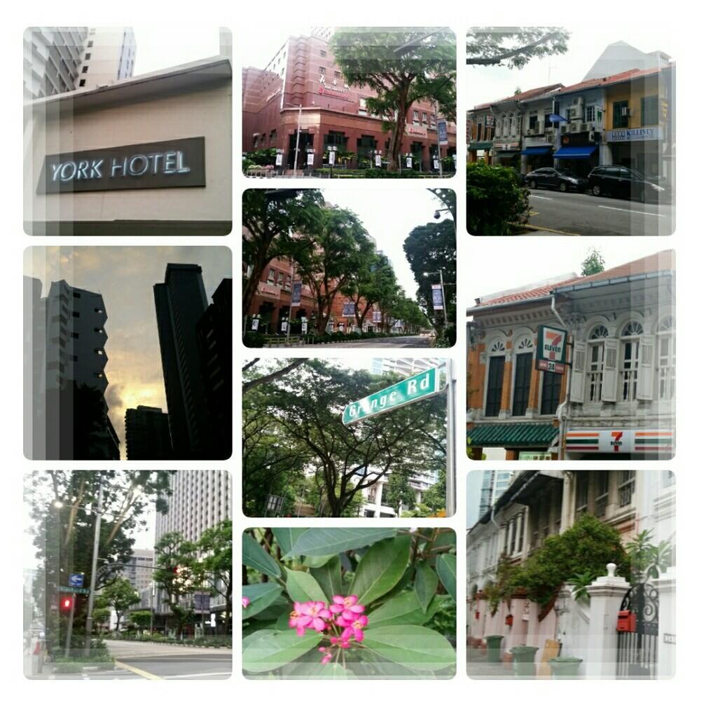 2018年9月シンガポールいいとこどり三日間♪~二日目スタート~_d0219834_18281675.jpg