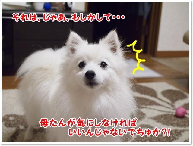 d0013149_00503601.jpg