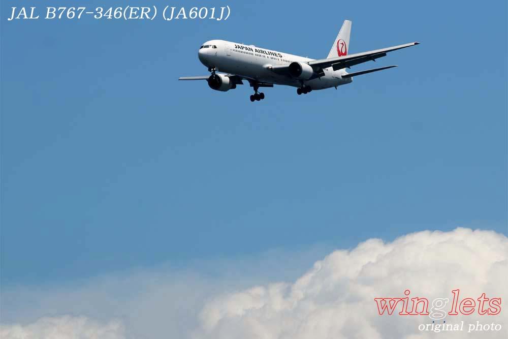 '18年 川崎・浮嶋公園レポート ・・・ JAL/JA601J_f0352866_2227127.jpg