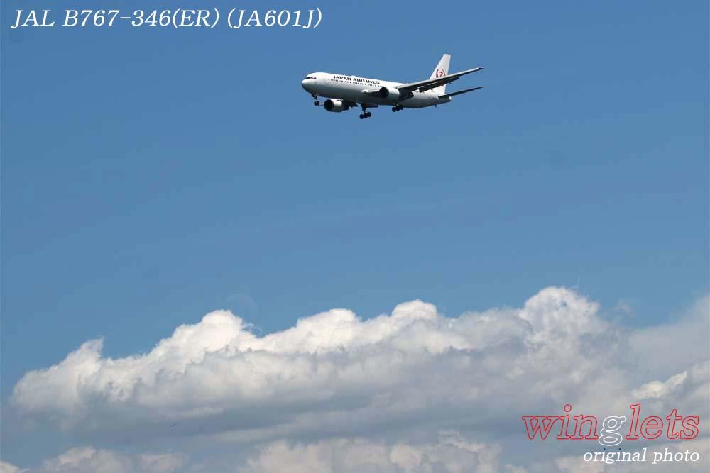 '18年 川崎・浮嶋公園レポート ・・・ JAL/JA601J_f0352866_22272390.jpg