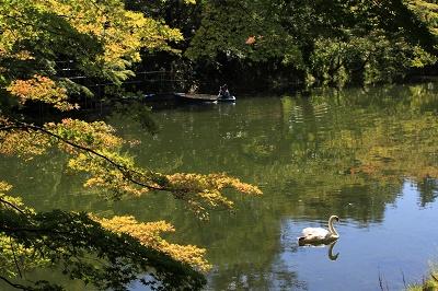 弘前公園でハートを探せ!?_d0131668_913038.jpg