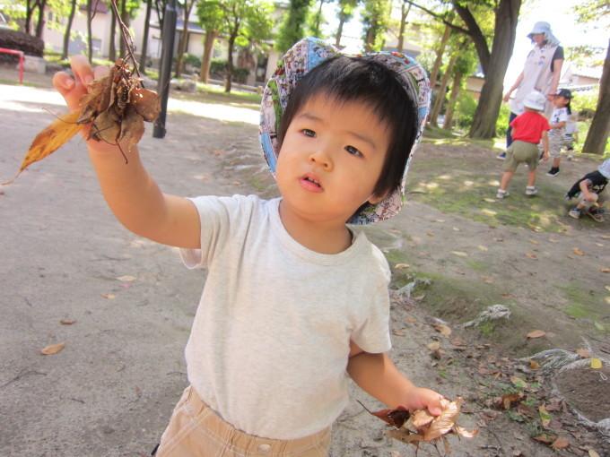 秋のお散歩_f0195982_18304885.jpg