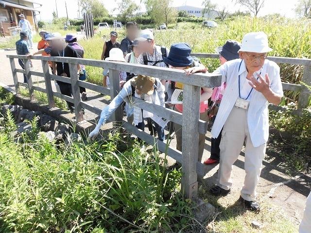 彼岸花は残念ながら最終盤 暑い中170名の皆さんに参加いただいた「彼岸花ウォーク2018」_f0141310_07091149.jpg