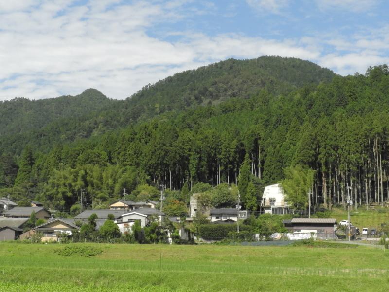 大原の里 桜井の径_e0048413_21265825.jpg