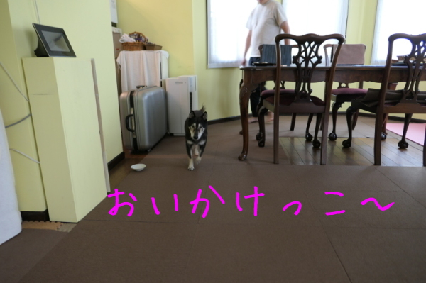 f0369014_14044561.jpg