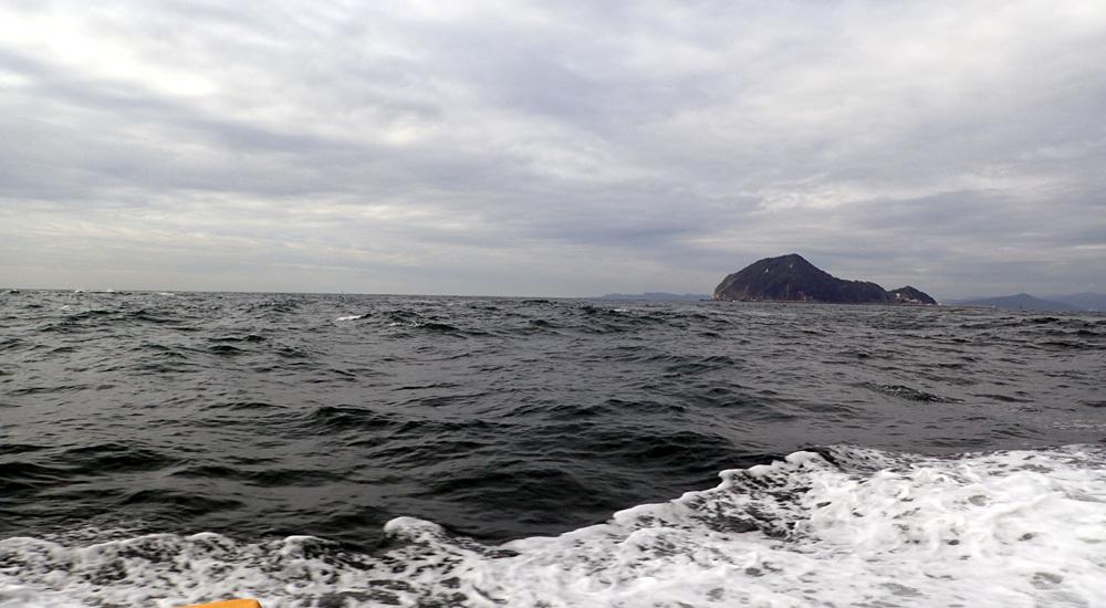 またもや大井港よりマダイ釣り。2018年9月26日(水)_d0171823_21465672.jpg