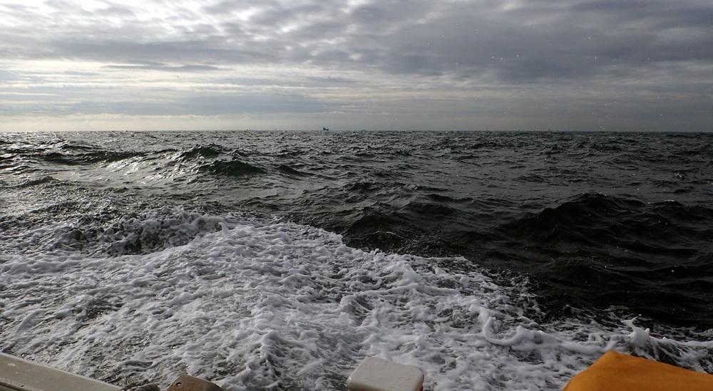 またもや大井港よりマダイ釣り。2018年9月26日(水)_d0171823_21480934.jpg