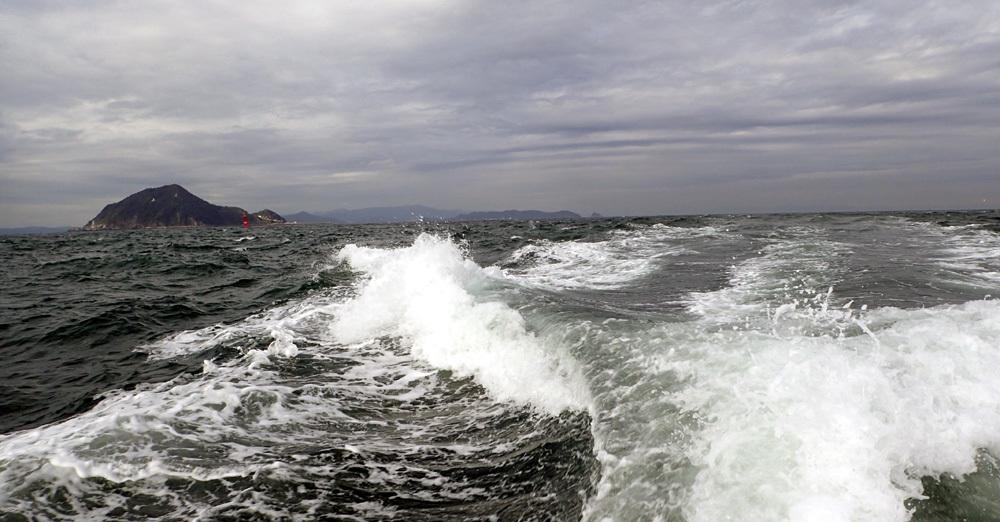 またもや大井港よりマダイ釣り。2018年9月26日(水)_d0171823_21481564.jpg