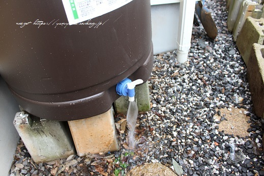 【非常災害用】楽天セールで買った雨水タンクを我が家に設置してみた(途中経過)_f0023333_21212826.jpg