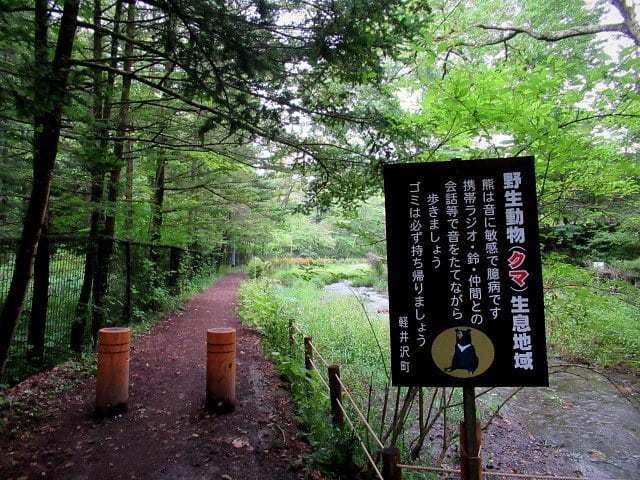 ③初秋の軽井沢をご案内 * 染まり始めた雲場池をお散歩♪_f0236260_17395712.jpg