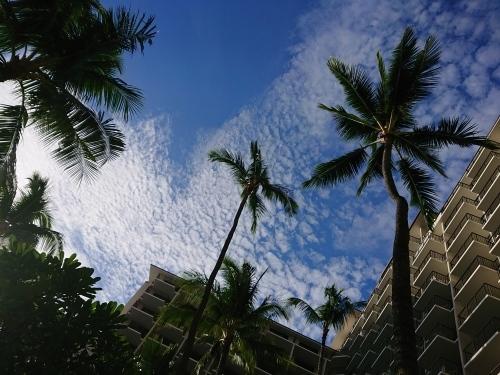 ハワイで女子デート♪_c0100865_08244348.jpg