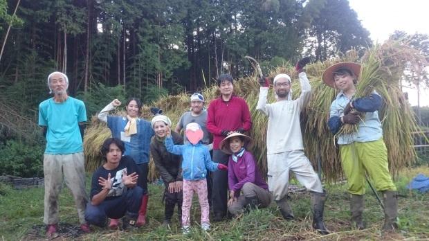 【レポート】谷津田開拓地 2018年の稲刈り_c0177665_19170917.jpg