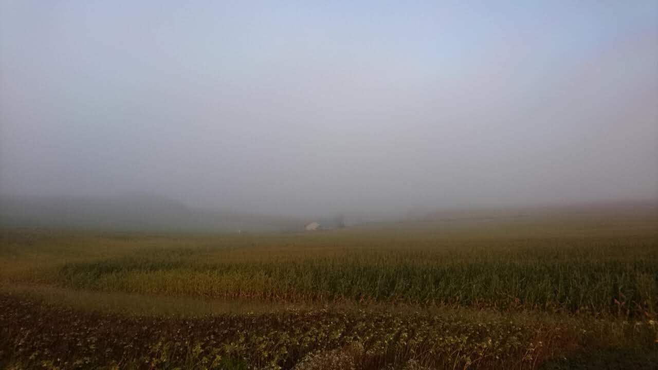 北海道美瑛の丘の朝_b0106766_18133850.jpg