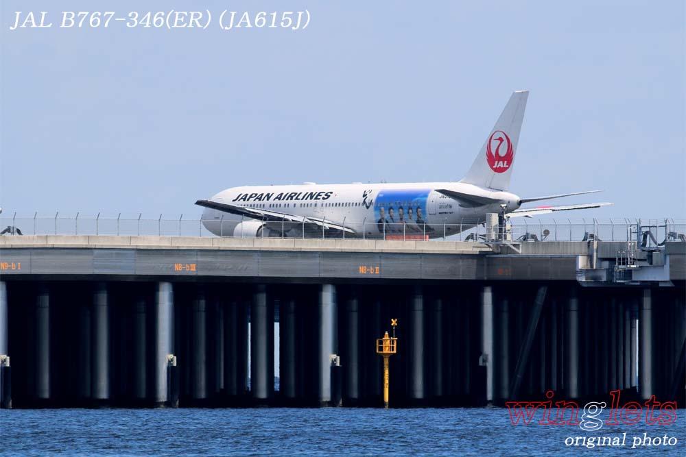 '18年 川崎・浮嶋公園レポート ・・・ JAL/JA615J_f0352866_22151133.jpg