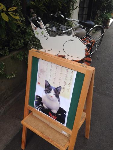 猫歩き〜〜🐾🐈@9月最終週〜〜_c0305685_12161507.jpg
