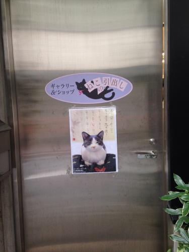 猫歩き〜〜🐾🐈@9月最終週〜〜_c0305685_12162590.jpg