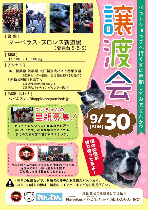 9/23 RADAC譲渡会へ_f0242002_14402557.jpg