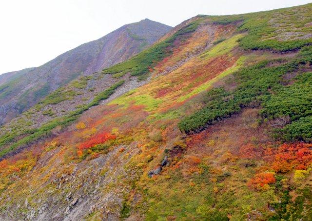 2018年9月24日(月・祝) 大雪山三色縦走「赤岳~白雲岳~緑岳」_a0345007_20504954.jpg