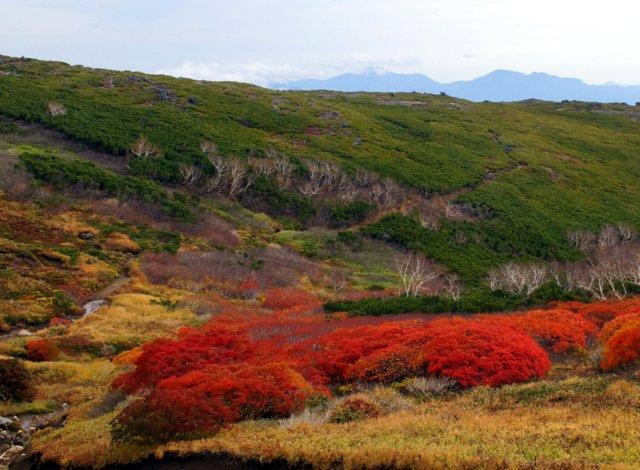 2018年9月24日(月・祝) 大雪山三色縦走「赤岳~白雲岳~緑岳」_a0345007_205353100.jpg