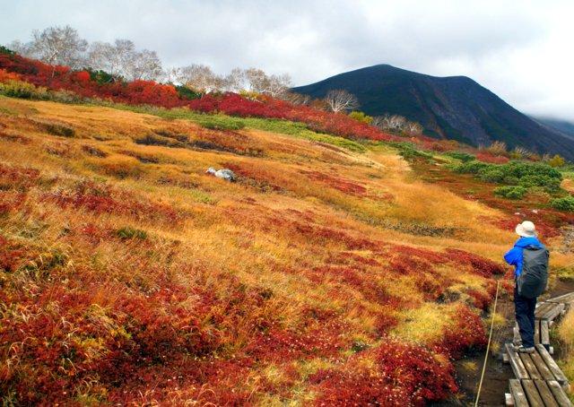 2018年9月24日(月・祝) 大雪山三色縦走「赤岳~白雲岳~緑岳」_a0345007_21481215.jpg