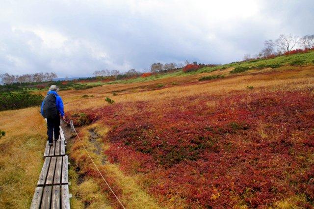 2018年9月24日(月・祝) 大雪山三色縦走「赤岳~白雲岳~緑岳」_a0345007_21483743.jpg