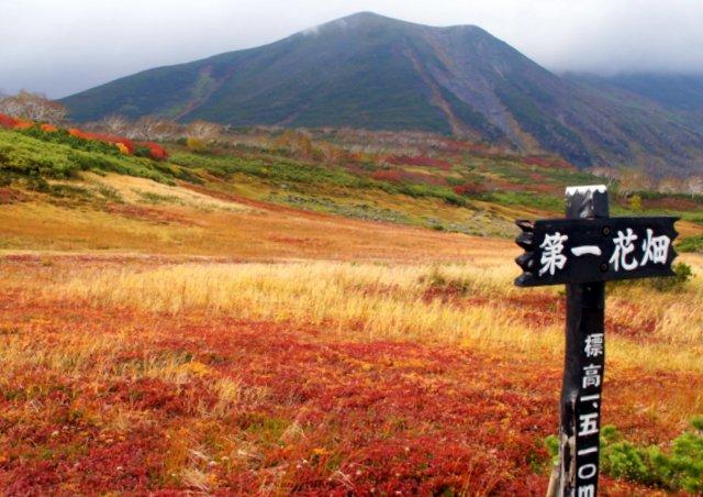 2018年9月24日(月・祝) 大雪山三色縦走「赤岳~白雲岳~緑岳」_a0345007_21522526.jpg