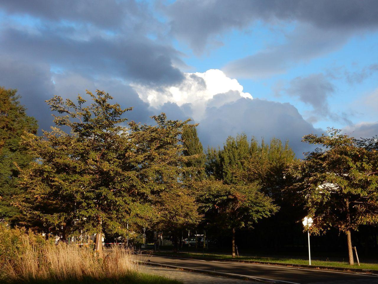 不安定な秋の天候_c0025115_22454663.jpg