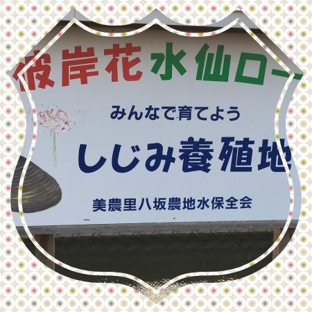 f0017559_00131325.jpg