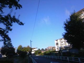 台風で臓揉む日曜日のお見合い_f0291565_12570822.jpg