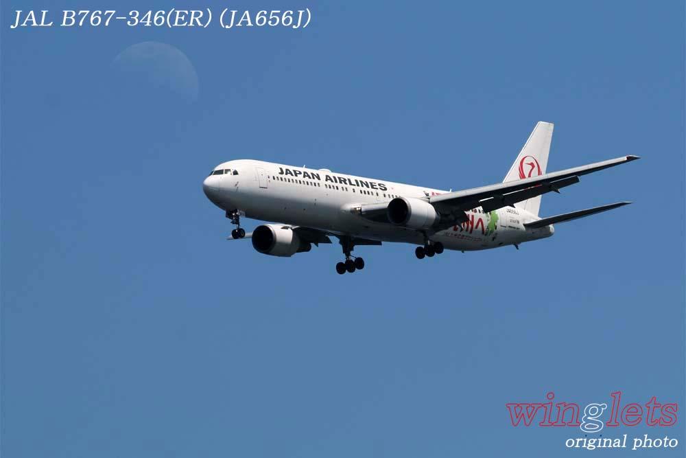 '18年 川崎・浮嶋公園レポート ・・・ JAL/JA656J_f0352866_2121864.jpg