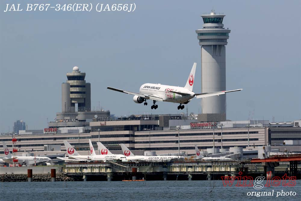 '18年 川崎・浮嶋公園レポート ・・・ JAL/JA656J_f0352866_21234822.jpg