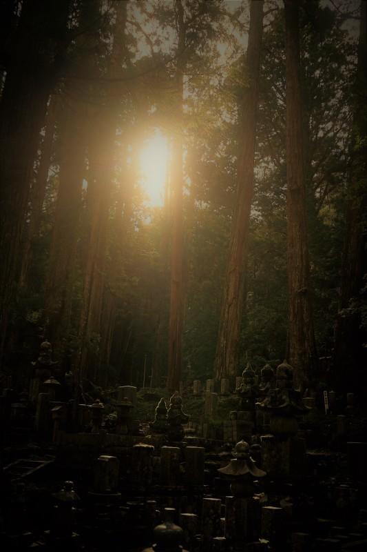 高野山 -6_b0340572_20384455.jpg