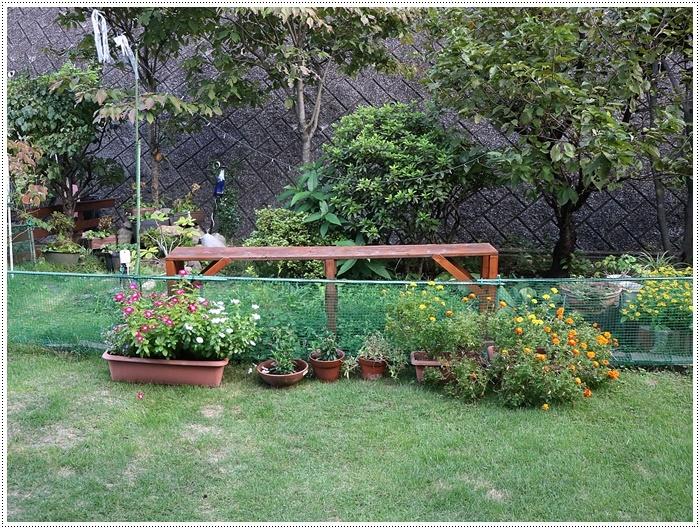 台風接近中、その前にできること、わんこたちを走らせたり庭を片付けたり。。。_b0175688_19584811.jpg