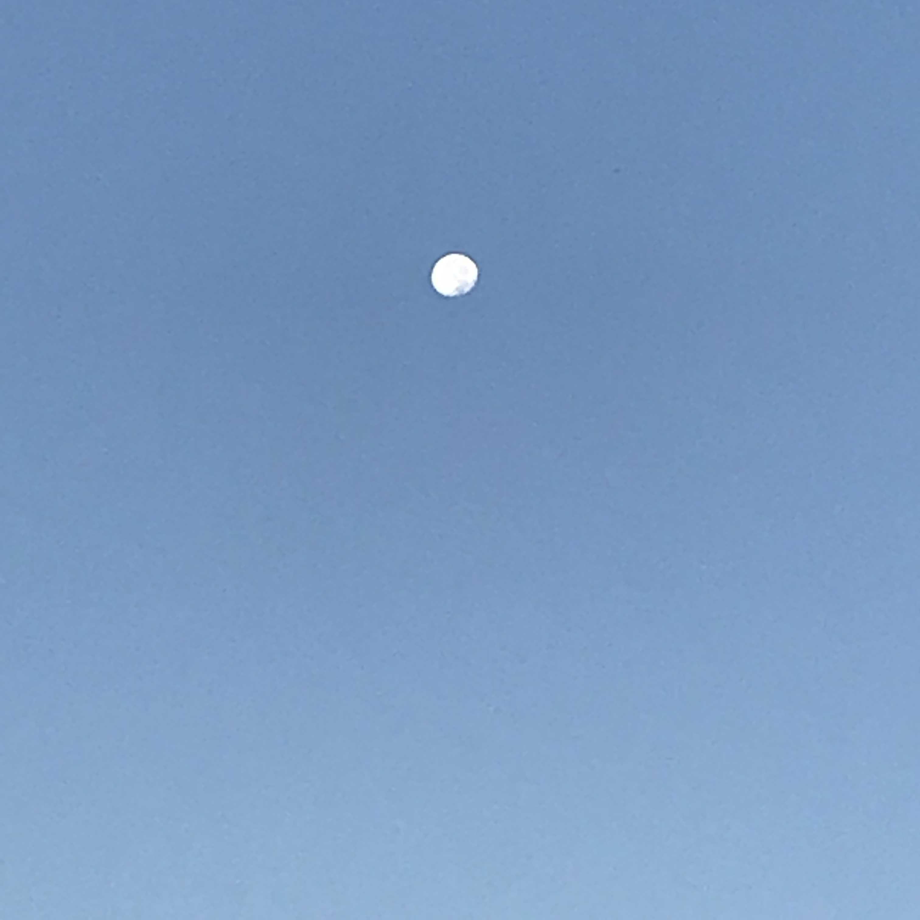 朝のお日様とお月様_f0204295_09114283.jpg