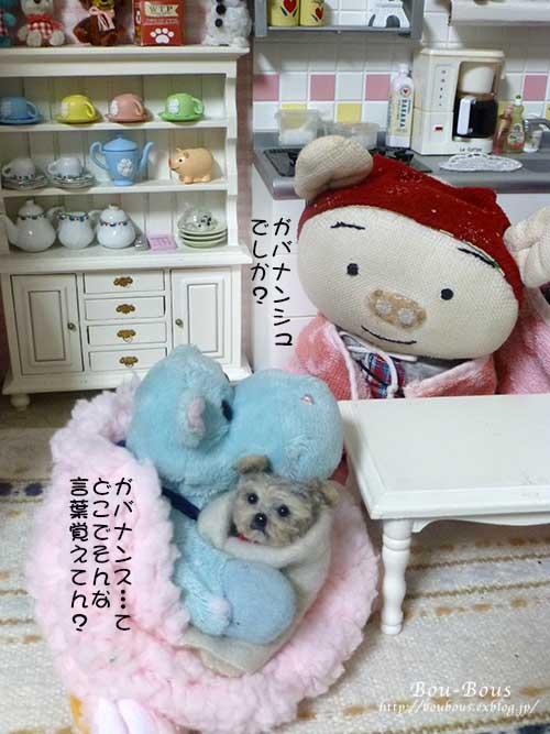 ホントに…寒いでし〜〜〜_d0128697_0563135.jpg