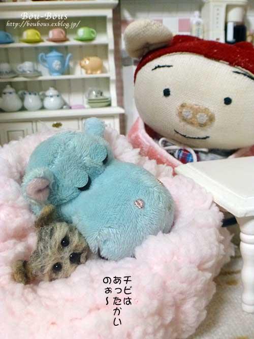 ホントに…寒いでし〜〜〜_d0128697_05646100.jpg