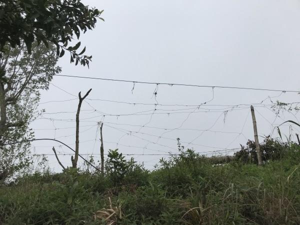 台風22号被害視察 in サグボ村_b0128901_15261549.jpg