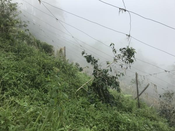 台風22号被害視察 in サグボ村_b0128901_15355862.jpg